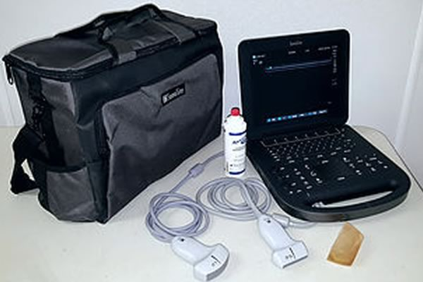 Ultrasonography-Equine-Practice-2