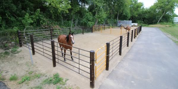 Lodi Vet Equine Boarding and Turnout