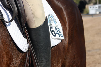 Recognizing Overheating in Your Horse