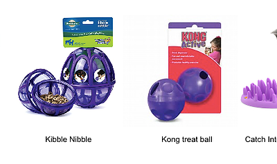 Slow Feeders and Interactive Toys