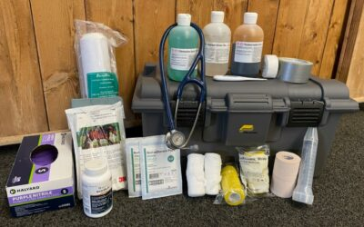Your Horse's First Aid Kit